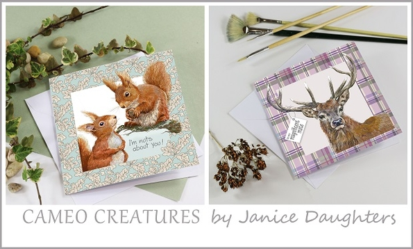 New greetings card collection