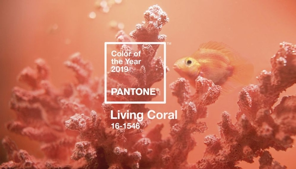 Pantone reveals Colour of the Year 2019