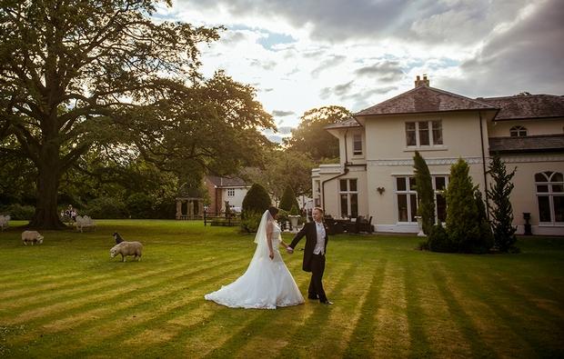 Hallmark Hotels seeks 'Orchid' wedding couples