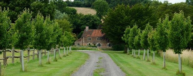 Spotlight on South Wiltshire